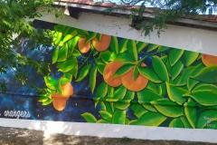 Résidence Le Clos des Orangers